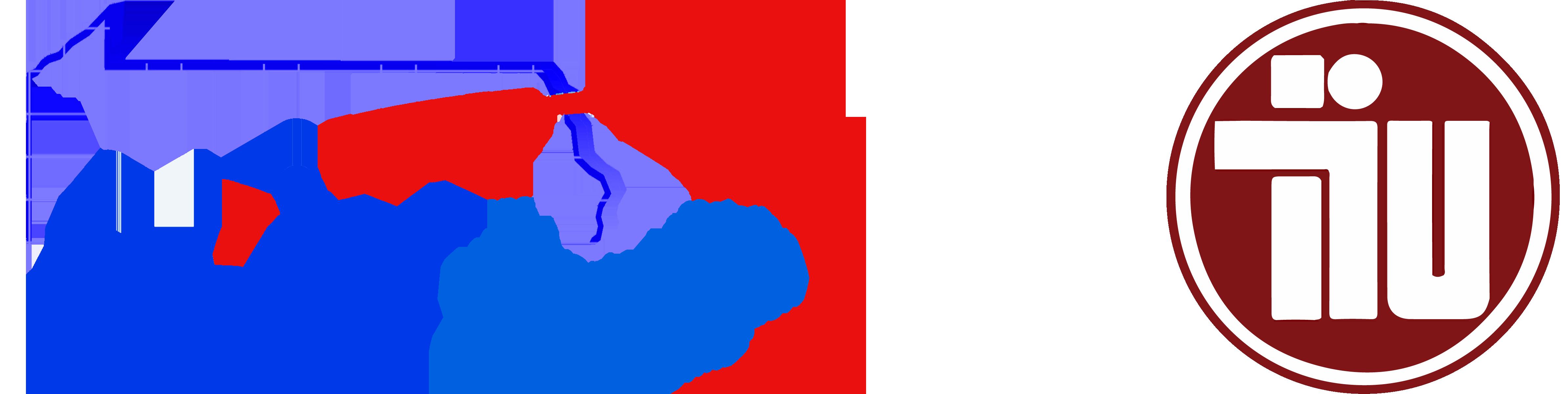 PAIU - TIU Logo